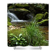 Moss And Water And Ambience Shower Curtain