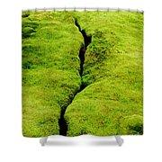 Moss Forest Shower Curtain