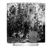 Mossy Rest Shower Curtain