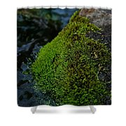Mossy River Rock Shower Curtain
