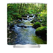 Mossy Rocks And Water   Shower Curtain
