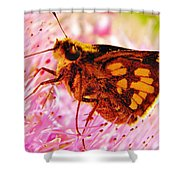 Moth Two Shower Curtain