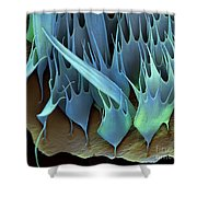Moth Wing Scales Sem Shower Curtain