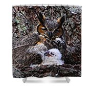 Mother And Baby Owl Shower Curtain