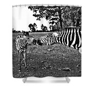 Mother And Child-black And White Shower Curtain