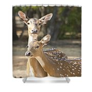 Mother And Child V3 Shower Curtain