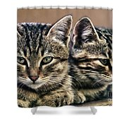 Mother And Child Wild Cats Shower Curtain