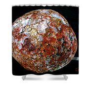 Mother Nature  Naturel Stone  Shower Curtain