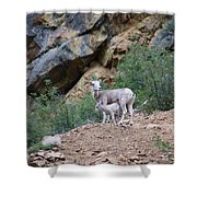 Mothers Shelter Shower Curtain