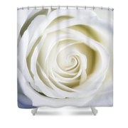 Mother's White Rose Shower Curtain