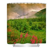 Mount Amery And Fireweed Shower Curtain