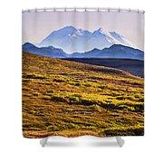Mount Mckinley, Denali National Park Shower Curtain