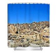Mount Whitney Gardian Shower Curtain