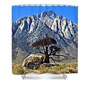 Mount Williamson Shower Curtain