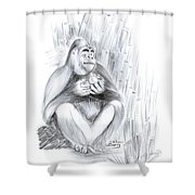 Mountain Gorilla 02 Shower Curtain