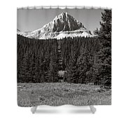 Mountain Peak Above The Tree Line Shower Curtain