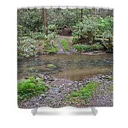 Mountain Road And Footbridge Shower Curtain