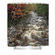 Mountain Stream In Autumn, White Shower Curtain