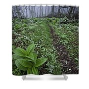 Mountains To Sea Trail Shower Curtain