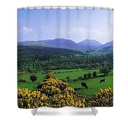 Mourne Mountains, Co Down, Ireland Shower Curtain