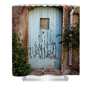 Mouse Door Shower Curtain