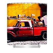 Moving Day Oaxaca Shower Curtain