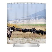 Moving The Herd Shower Curtain