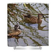 Mr And Mrs Blue Wing Teal Shower Curtain