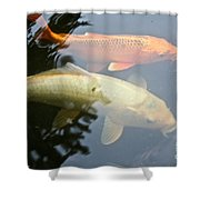 Mr And Mrs Koi Shower Curtain