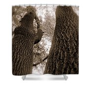 Mr And Mrs Oak Land Shower Curtain