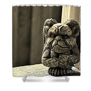 Mr G For Grouchy Gargoyle Esq Shower Curtain