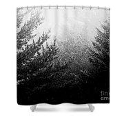 Mt Desert Fog Shower Curtain