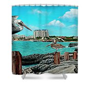 Mullet Bay Shower Curtain