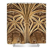 Musee De Cluny Chapel Vault Shower Curtain