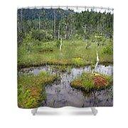 Muskeg Bog With Ponds, Mitkof Island Shower Curtain