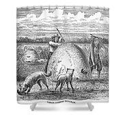 Muskrat Hunting, 1873 Shower Curtain