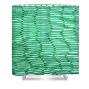 Mussel Gill Lm Shower Curtain