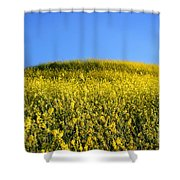 Mustard Grass Shower Curtain