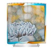 My Favorite Dahlia  Shower Curtain