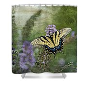 My Mothers Garden - D007041 Shower Curtain by Daniel Dempster
