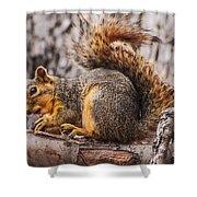 My Nut Shower Curtain