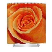 My Wonderful Rose Shower Curtain
