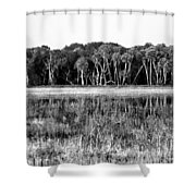 Myakka River Wilderness Shower Curtain