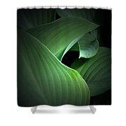 Mysterious Hostas Shower Curtain