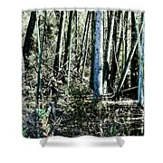 Mystery Forest Shower Curtain