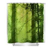 Mystical Glade Shower Curtain by Judi Bagwell