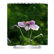 Mystical Moment Shower Curtain