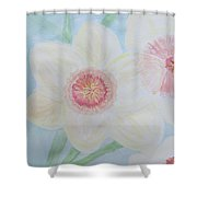 Narcissus Flower Shower Curtain