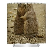 National Zoo 2 Prarie Dogs Sitting Shower Curtain