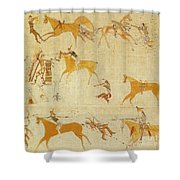 Native American Art Shower Curtain
